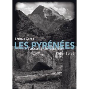 Les Pyrénées à l'assaut du château