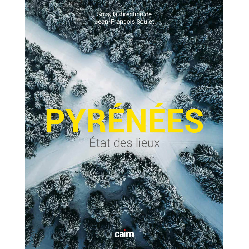 Couverture de « Pyrénées état des lieux », dirigé par Jean-François Soulet, aux éditions Cairn