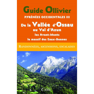 Pyrénées Occidentales III De la Vallée d'Ossau au Val d'Azun, les avant-monts, le massif des Eaux-Bonnes