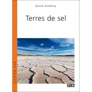 Terres de sel, roman de Sylvie Anahory - Salies-de-Béarn dans l'histoire